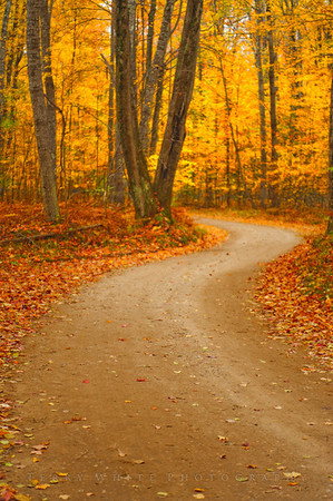 The Long Winding Road - Traverse City MI